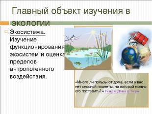 Главный объект изучения в экологии Экосистема. Изучение функционирования экосист