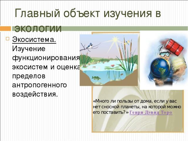 Главный объект изучения в экологии Экосистема. Изучение функционирования экосистем и оценка пределов антропогенного воздействия. «Много ли пользы от дома, если у вас нет сносной планеты, на которой можно его поставить?» Генри Дэвид Торо