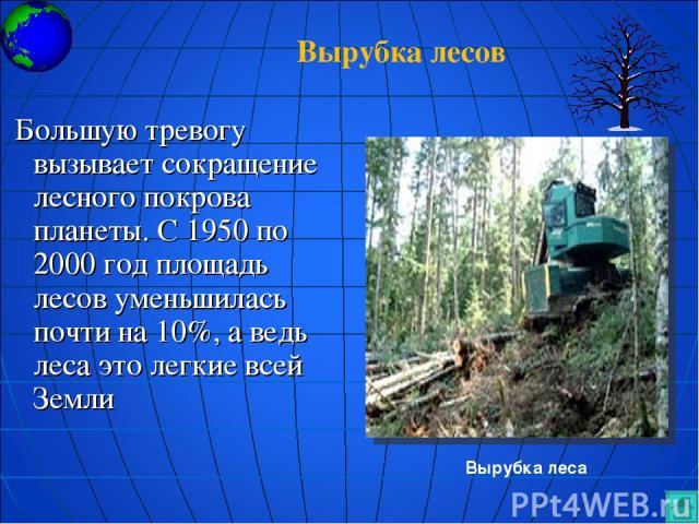 Большую тревогу вызывает сокращение лесного покрова планеты. С 1950 по 2000 год площадь лесов уменьшилась почти на 10%, а ведь леса это легкие всей Земли Вырубка леса Вырубка лесов