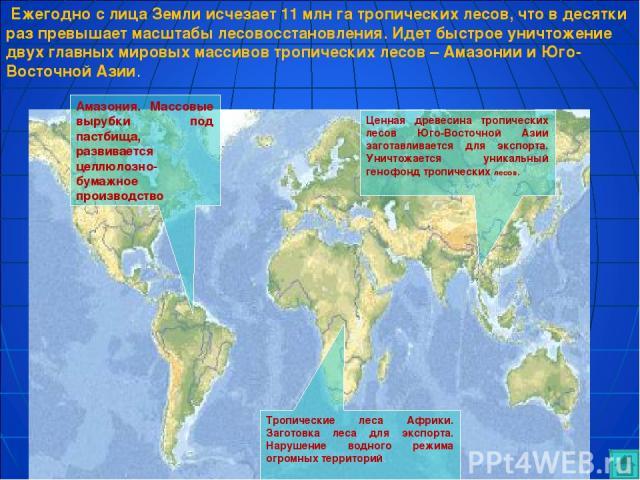 Амазония. Массовые вырубки под пастбища, развивается целлюлозно-бумажное производство. Ценная древесина тропических лесов Юго-Восточной Азии заготавливается для экспорта. Уничтожается уникальный генофонд тропических лесов. Тропические леса Африки. З…