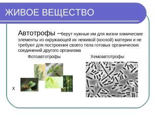 ЖИВОЕ ВЕЩЕСТВО Автотрофы –берут нужные им для жизни химические элементы из окруж