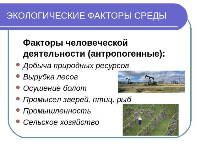 ЭКОЛОГИЧЕСКИЕ ФАКТОРЫ СРЕДЫ Факторы человеческой деятельности (антропогенные): Добыча природных ресурсов Вырубка лесов Осушение болот Промысел зверей, птиц, рыб Промышленность Сельское хозяйство