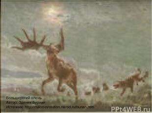 Большерогий олень Автор: Зденек Буриан Источник: http://macroevolution.narod.ru/