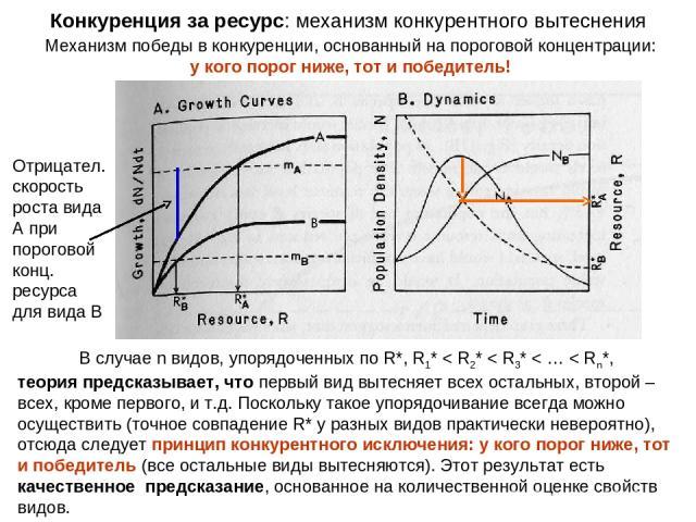 Механизм победы в конкуренции, основанный на пороговой концентрации: у кого порог ниже, тот и победитель! Конкуренция за ресурс: механизм конкурентного вытеснения В случае n видов, упорядоченных по R*, R1* < R2* < R3* < … < Rn*, теория предсказывает…
