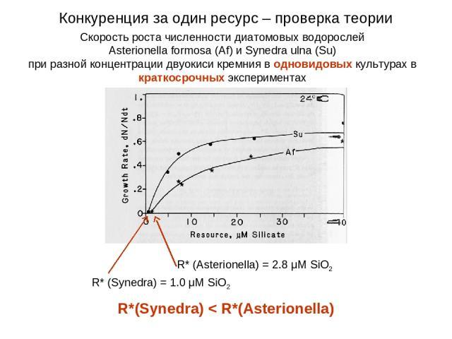 Скорость роста численности диатомовых водорослей Asterionella formosa (Af) и Synedra ulna (Su) при разной концентрации двуокиси кремния в одновидовых культурах в краткосрочных экспериментах Конкуренция за один ресурс – проверка теории R* (Synedra) =…