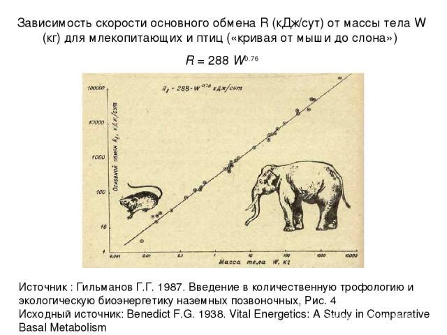 Зависимость скорости основного обмена R (кДж/сут) от массы тела W (кг) для млекопитающих и птиц («кривая от мыши до слона») R = 288 W0.76 Источник : Гильманов Г.Г. 1987. Введение в количественную трофологию и экологическую биоэнергетику наземных поз…
