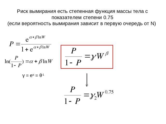 Риск вымирания есть степенная функция массы тела с показателем степени 0.75 (если вероятность вымирания зависит в первую очередь от N) γ = eα = θ-1