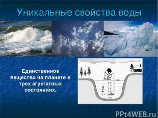 Уникальные свойства воды Распределение температуры в зимнем водоеме Единственное