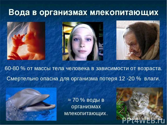 Вода в организмах млекопитающих 60-80 % от массы тела человека в зависимости от возраста. Смертельно опасна для организма потеря 12 -20 % влаги. ≈ 70 % воды в организмах млекопитающих.