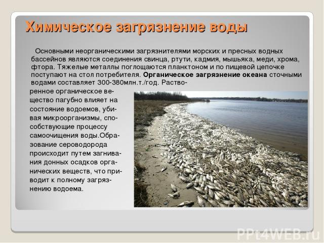 Химическое загрязнение воды Основными неорганическими загрязнителями морских и пресных водных бассейнов являются соединения свинца, ртути, кадмия, мышьяка, меди, хрома, фтора. Тяжелые металлы поглощаются планктоном и по пищевой цепочке поступают на …