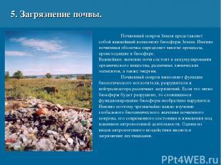 5. Загрязнение почвы. Почвенный покров Земли представляет собой важнейший компон
