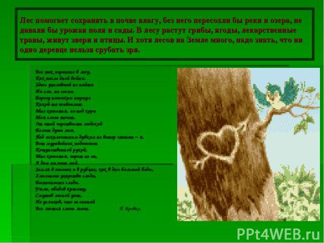 Лес помогает сохранять в почве влагу, без него пересохли бы реки и озера, не давали бы урожая поля и сады. В лесу растут грибы, ягоды, лекарственные травы, живут звери и птицы. И хотя лесов на Земле много, надо знать, что ни одно деревце нельзя сруб…