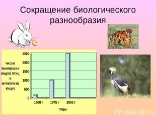 Сокращение биологического разнообразия