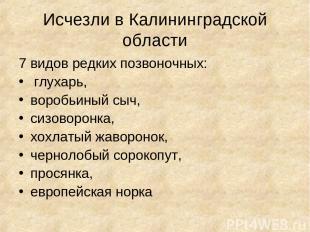 Исчезли в Калининградской области 7 видов редких позвоночных: глухарь, воробьины
