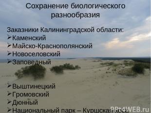 Сохранение биологического разнообразия Заказники Калининградской области: Каменс