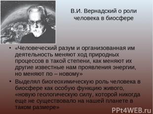 В.И. Вернадский о роли человека в биосфере «Человеческий разум и организованная