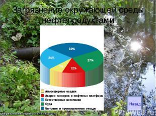 Загрязнение окружающей среды нефтепродуктами Назад