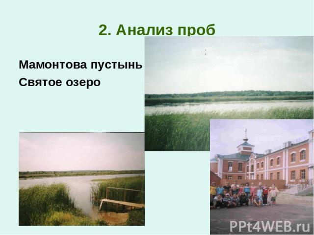 2. Анализ проб Мамонтова пустынь Святое озеро