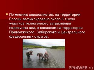 По мнению специалистов, на территории России зафиксировано около 6 тысяч участко