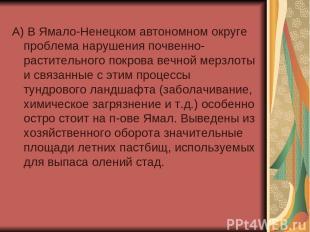 А) В Ямало-Ненецком автономном округе проблема нарушения почвенно-растительного