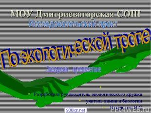 МОУ Дмитриевогорская СОШ Разработала руководитель экологического кружка учитель