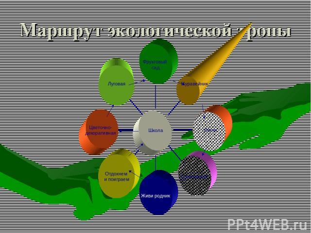 Маршрут экологической тропы