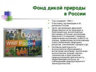 Фонд дикой природы в России Год создания: 1994 г. Участники: организации в 40 ре