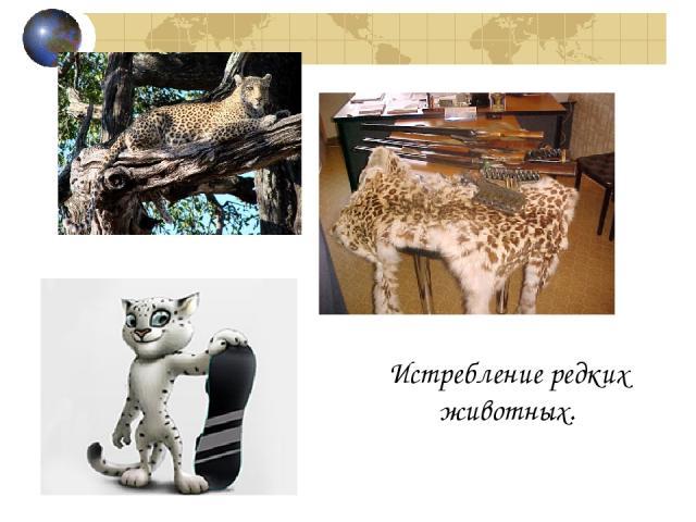 Истребление редких животных.