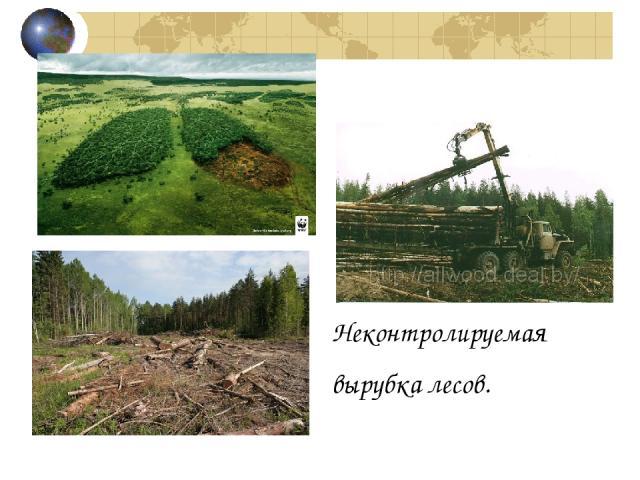 Неконтролируемая вырубка лесов.
