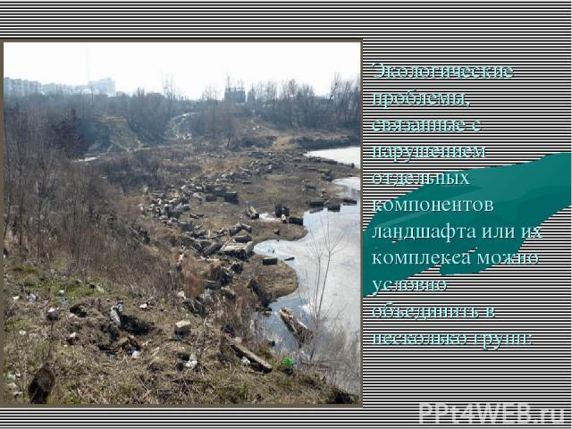 Экологические проблемы, связанные с нарушением отдельных компонентов ландшафта или их комплекса можно условно объединить в несколько групп: