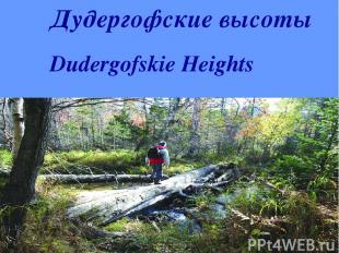 Дудергофские высоты Dudergofskie Heights