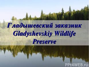 Гладышевский заказник Gladyshevskiy Wildlife Preserve