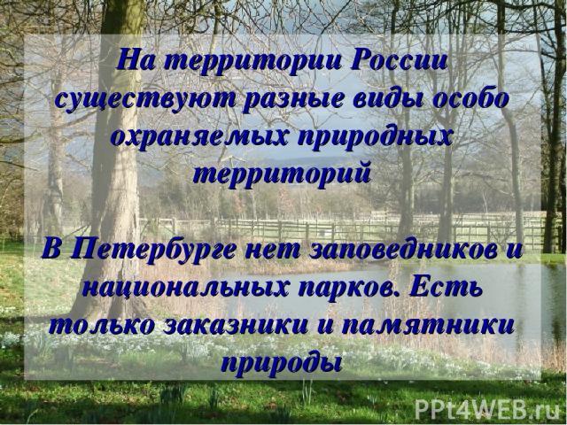 На территории России существуют разные виды особо охраняемых природных территорий В Петербурге нет заповедников и национальных парков. Есть только заказники и памятники природы