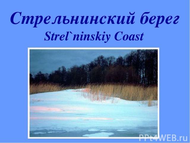 Стрельнинский берег Strel`ninskiy Coast