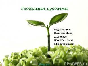 Подготовила: Нетёсова Инна, 11 А класс МОУ СОШ № 31 г. Новочеркасск 900igr.net