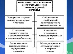 Закон РФ «Об охране окружающей природной среды» (2002 г) ПРИНЦИПЫ ???