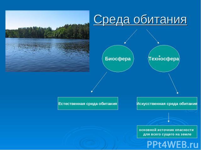 Среда обитания Техносфера Естественная среда обитания Искусственная среда обитания Биосфера основной источник опасности для всего сущего на земле