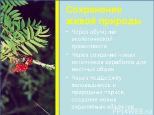 Через обучение экологической грамотности Через создание новых источников заработ