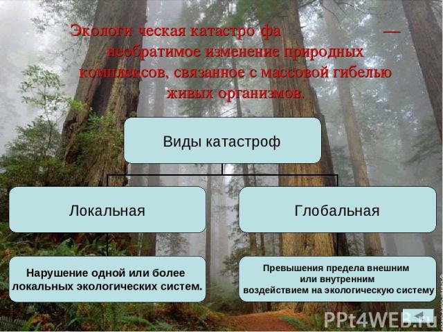 Экологи ческая катастро фа — необратимое изменение природных комплексов, связанное с массовой гибелью живых организмов.