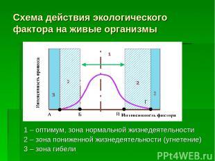 Схема действия экологического фактора на живые организмы 1 – оптимум, зона норма