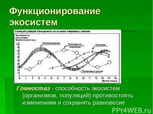 Функционирование экосистем Гомеостаз - способность экосистем (организмов, популя