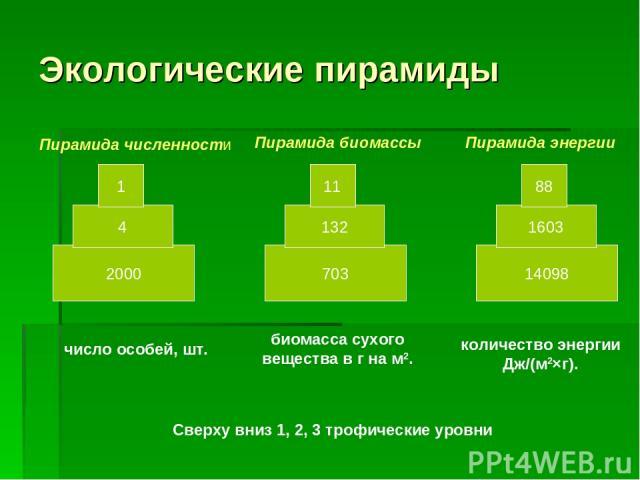 Экологические пирамиды 2000 4 1 703 132 11 14098 1603 88 Пирамида численности Пирамида биомассы Пирамида энергии число особей, шт. биомасса сухого вещества в г на м2. количество энергии Дж/(м2×г). Сверху вниз 1, 2, 3 трофические уровни