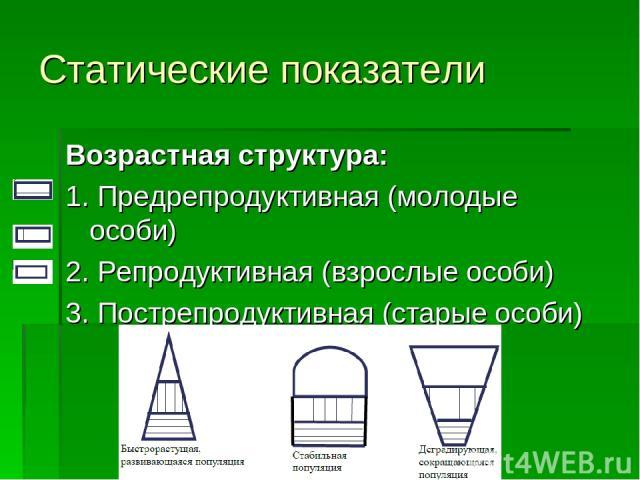 Статические показатели Возрастная структура: 1. Предрепродуктивная (молодые особи) 2. Репродуктивная (взрослые особи) 3. Пострепродуктивная (старые особи)