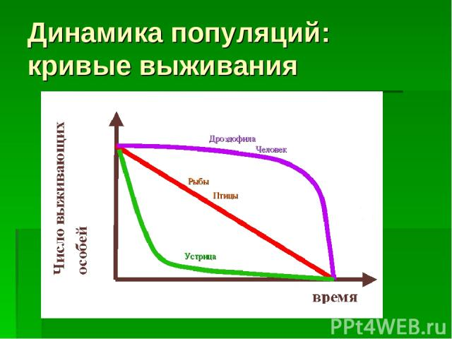 Динамика популяций: кривые выживания Дроздофила Человек Рыбы Устрица Птицы