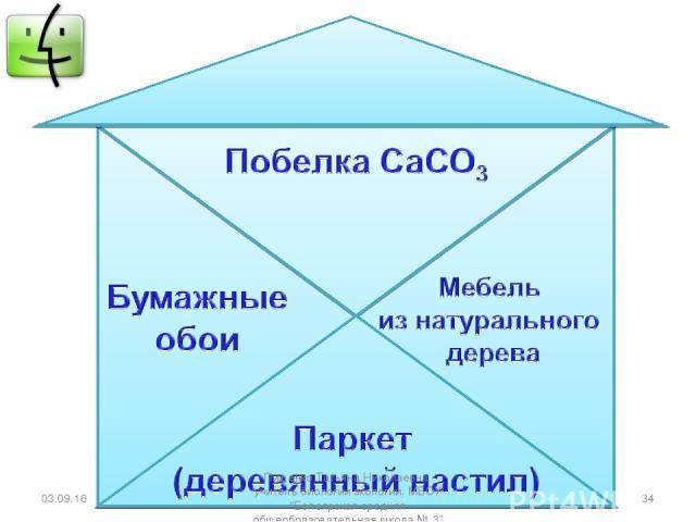 * * Пищенко Татьяна Николаевна, учитель биологии экологии, МБОУ