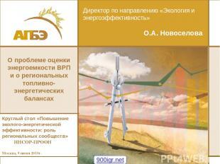 Директор по направлению «Экология и энергоэффективность» О.А. Новоселова Круглый
