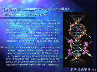 Действие больших доз излучений на биологические объекты Живой организм очень чув