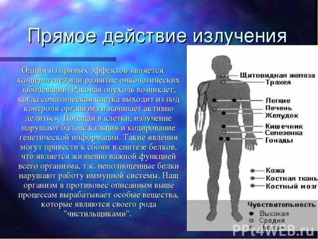 Прямое действие излучения Одним из прямых эффектов является канцерогенез или развитие онкологических заболеваний. Раковая опухоль возникает, когда соматическая клетка выходит из под контроля организма и начинает активно делиться. Попадая в клетки, и…