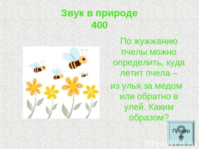 Звук в природе 400 По жужжанию пчелы можно определить, куда летит пчела – из улья за медом или обратно в улей. Каким образом? Проверка