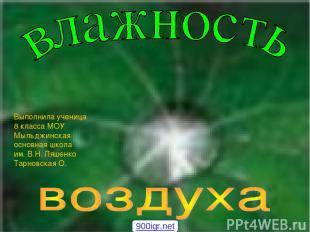 Выполнила ученица 8 класса МОУ Мыльджинская основная школа им. В.Н. Ляшенко Тарн